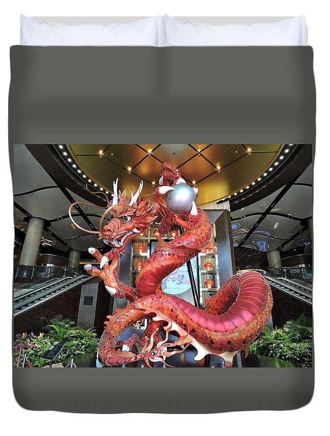 Attractions Duvet Cover featuring the photograph Lets Play by Trevor Whitehead