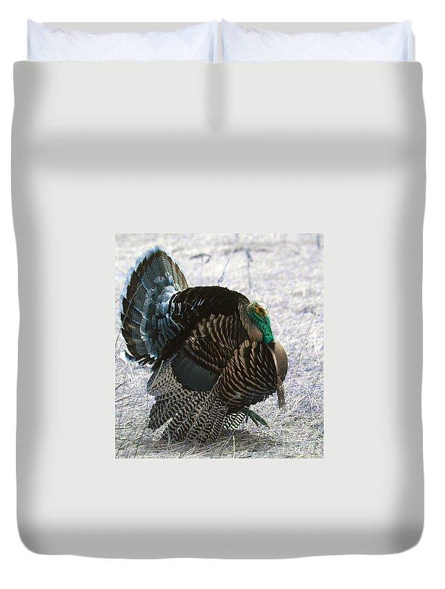 Turkeys. Birds. Fowl Duvet Cover featuring the photograph Lets Talk Turkey by Jeff Swan