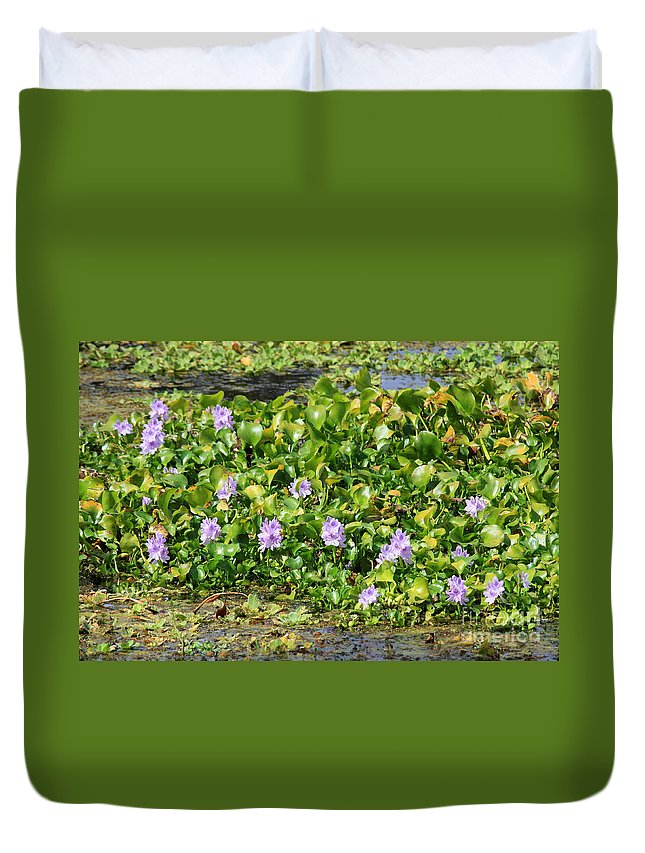 Wetlands Duvet Cover featuring the photograph Lettuce Lake Flowers by Carol Groenen