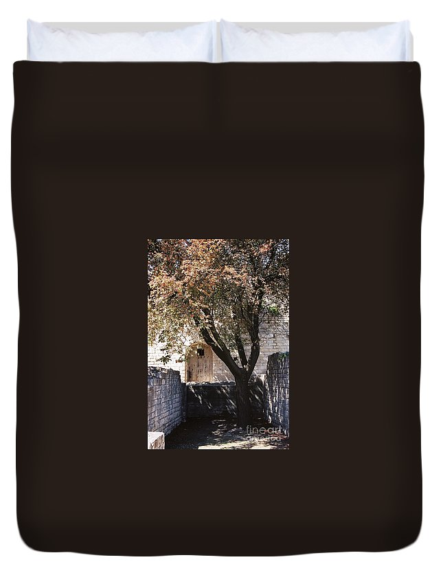 Life Duvet Cover featuring the photograph Life And Death by Nadine Rippelmeyer
