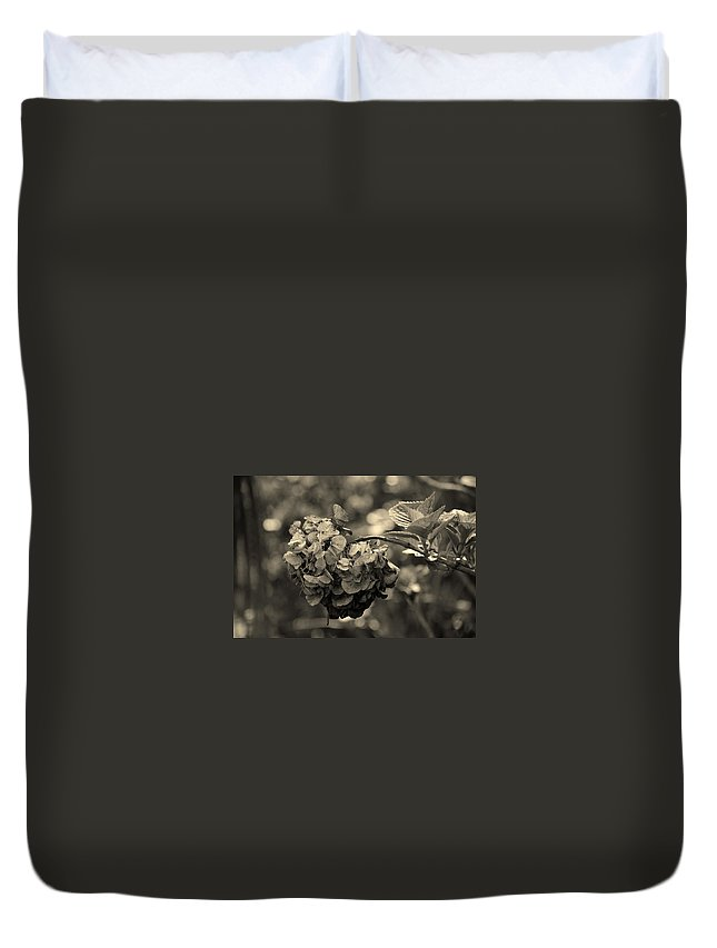 Life And Death Duvet Cover featuring the photograph Life And Death by Susanne Van Hulst