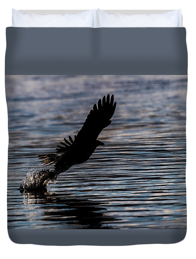 Eagle Lifting Off Silhouette Catch Fish Sunrise Duvet Cover featuring the photograph Lift Off by David Heemsbergen