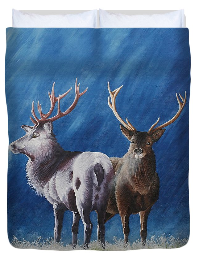 Portrait Duvet Cover featuring the painting Light And Dark Stags by Pauline Sharp