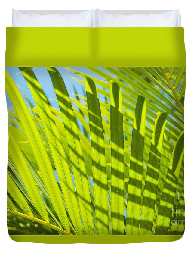 Afternoon Duvet Cover featuring the photograph Light Green Palm Leaves by Mary Van de Ven - Printscapes
