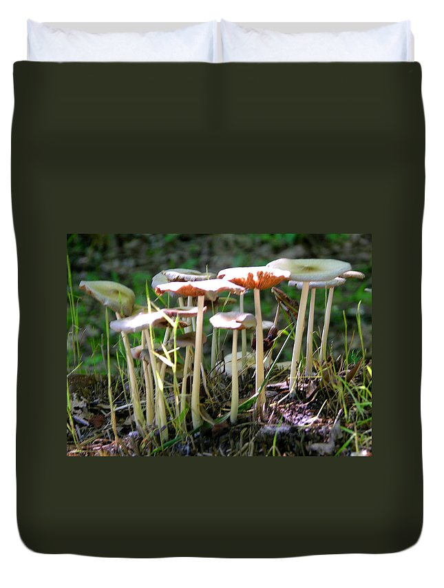 Sunlight Duvet Cover featuring the photograph Light On Mushrooms by John Lautermilch