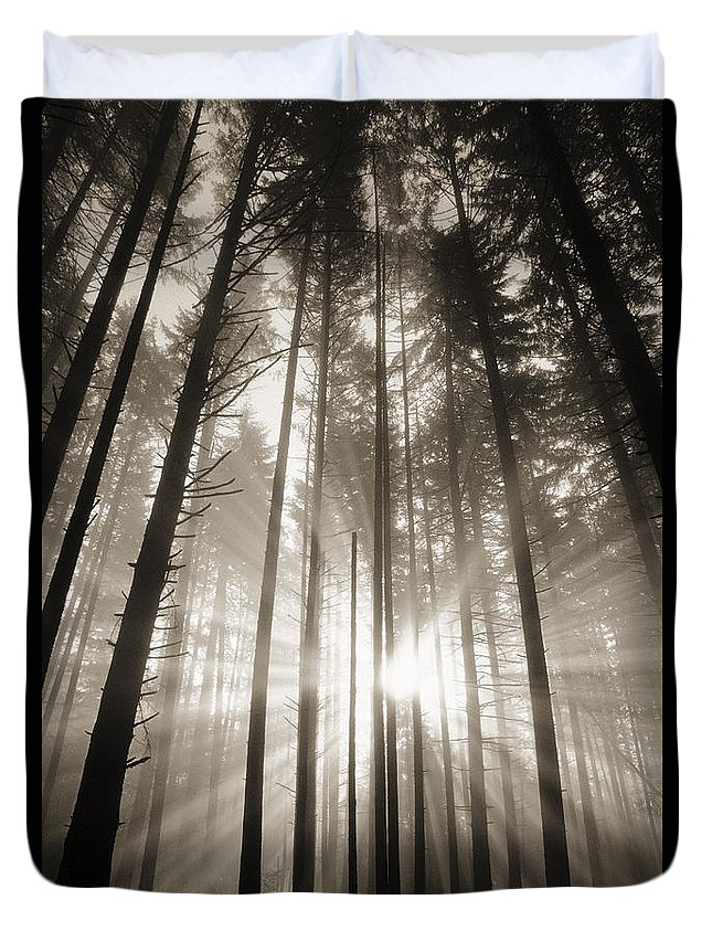 Art Medium Duvet Cover featuring the photograph Light Through Forest by Greg Vaughn - Printscapes