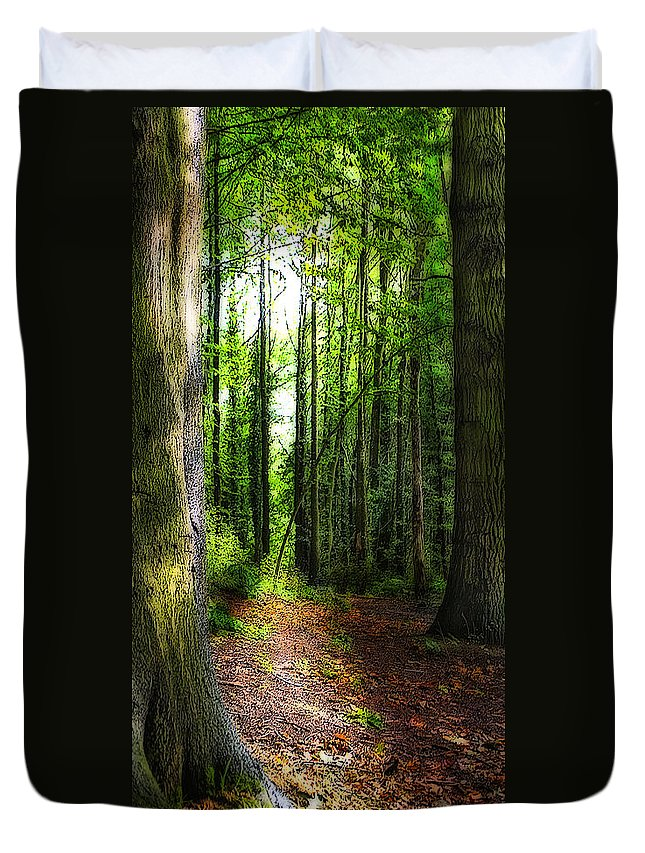 Trees Duvet Cover featuring the photograph Light Through The Trees by Meirion Matthias
