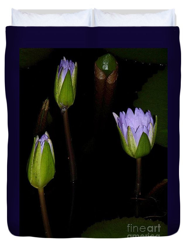 Purple Duvet Cover featuring the painting Light Violet Lilies by Eric Schiabor