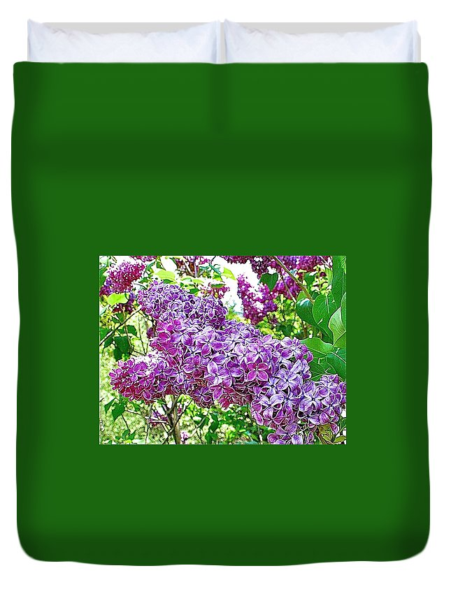 Lilac Duvet Cover featuring the photograph Lilac by Danielle Sigmon
