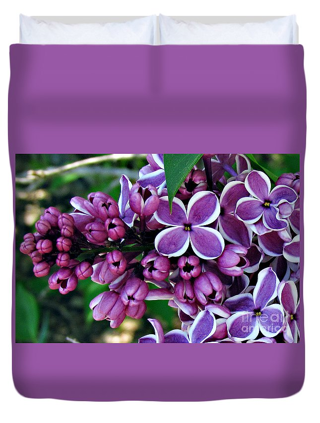 Flowers Duvet Cover featuring the photograph Lilac by Roxanne Marshal