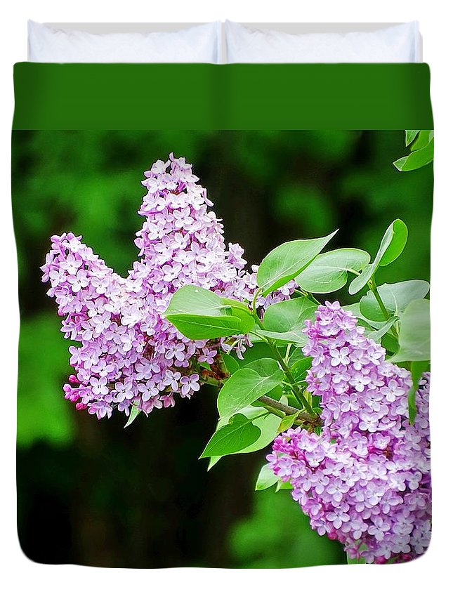 Lilacs Duvet Cover featuring the photograph Lilacs by Mhiss Little
