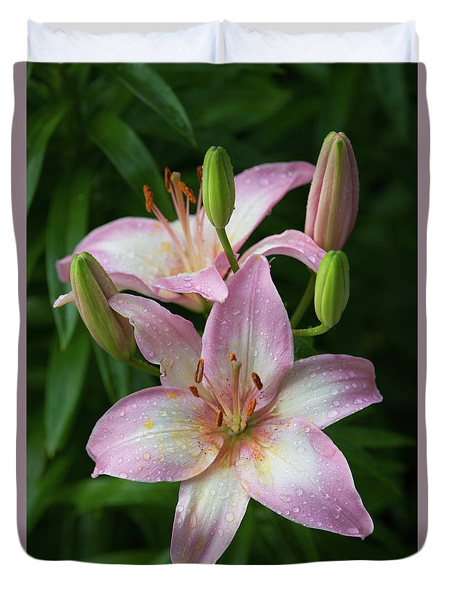 Lily Duvet Cover featuring the photograph Lilies And Raindrops by Bernard Lynch