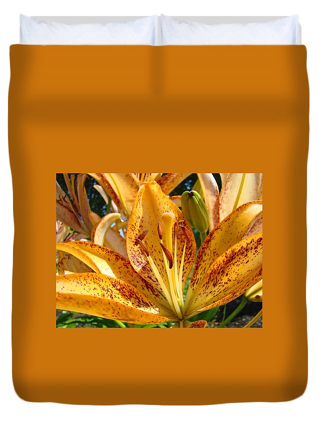 Lilies Duvet Cover featuring the photograph Lilies Art Prints Orange Lily Flowers 2 Gilcee Prints Baslee Troutman by Baslee Troutman