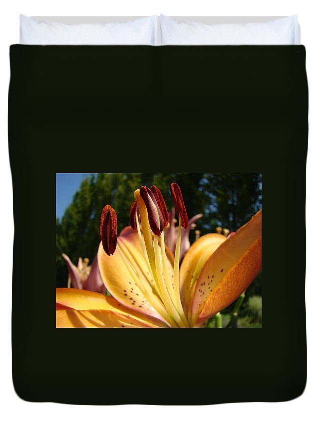 Lilies Duvet Cover featuring the photograph Lilies Orange Glowing Lily Flowers Giclee Prints Baslee Troutman by Baslee Troutman