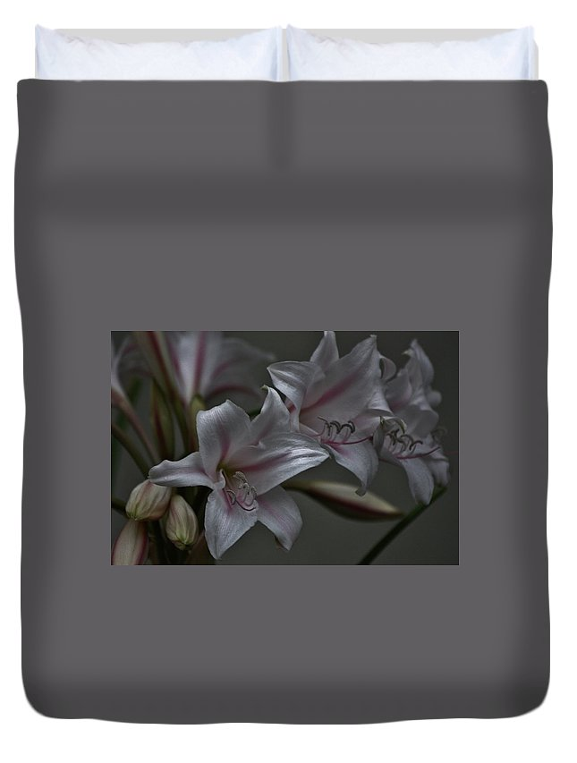 Lillies With Pink Stripe Duvet Cover featuring the photograph Lillies by Kathy Kirkland