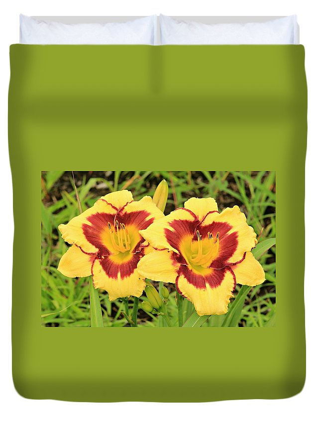 Lilly Duvet Cover featuring the photograph Lilly1 by Shelley Wilson