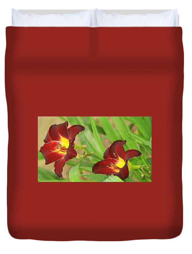 Burgundy Duvet Cover featuring the photograph Lilly2 by Shelley Wilson