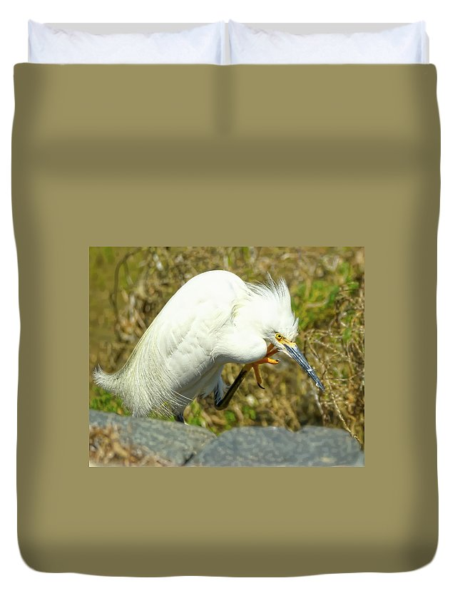 Snowy Egret Duvet Cover featuring the photograph Lillywhite by Dennis Bolton