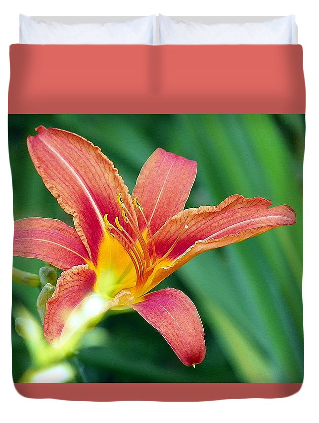 Red Lily Duvet Cover featuring the photograph Lily And Glowing Light by Vineta Marinovic