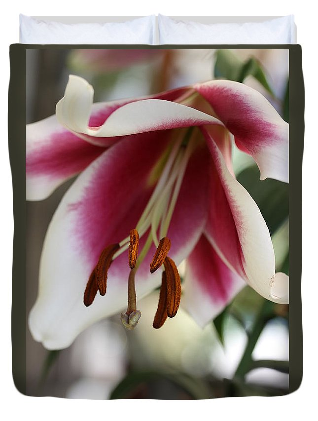 White Pink Duvet Cover featuring the photograph Lily Beauty by Christiane Schulze Art And Photography