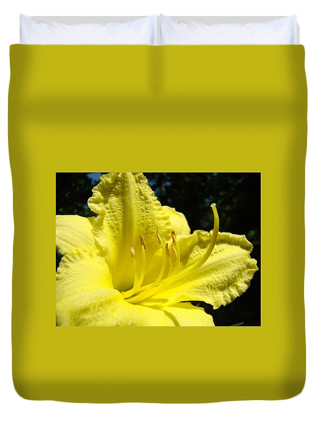 Lilies Duvet Cover featuring the photograph Lily Flower Artwork Yellow Lilies 1 Giclee Art Prints Baslee Troutman by Baslee Troutman