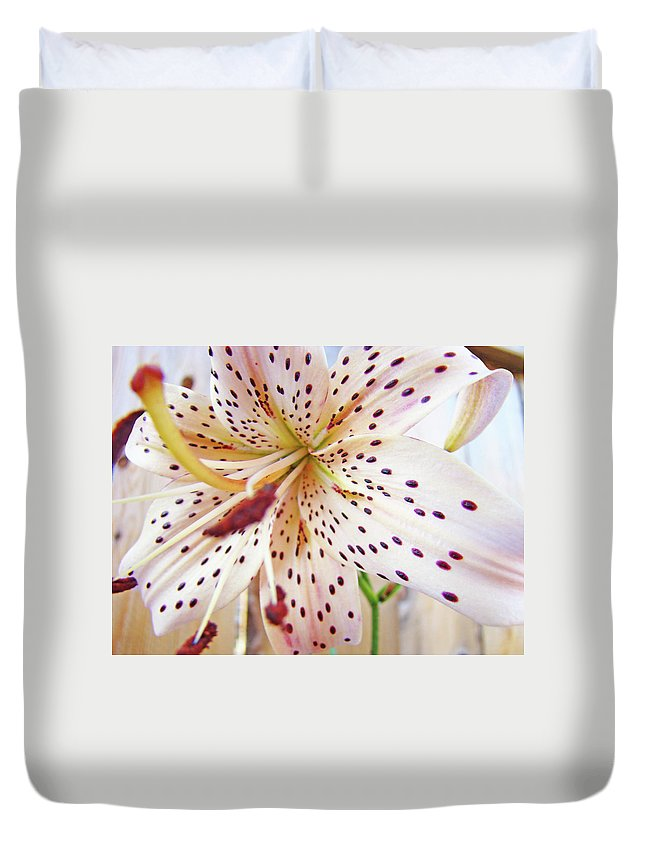 Lilies Duvet Cover featuring the photograph Lily Flower White Lilies Art Prints Baslee Troutman by Baslee Troutman