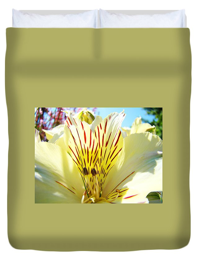 Lilies Duvet Cover featuring the photograph Lily Flowers Art Prints Yellow Lillies 2 Giclee Prints Baslee Troutman by Baslee Troutman