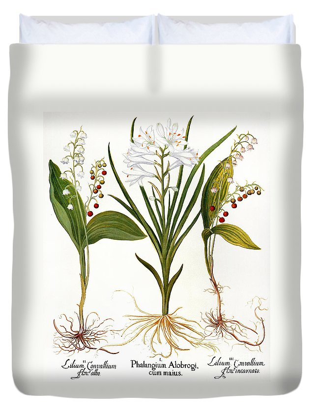 1613 Duvet Cover featuring the photograph Lily-of-the-valley by Granger