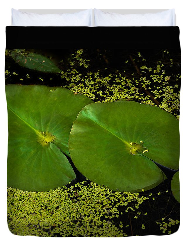 Lily Duvet Cover featuring the photograph Lily Pad Pond by Steve Gadomski