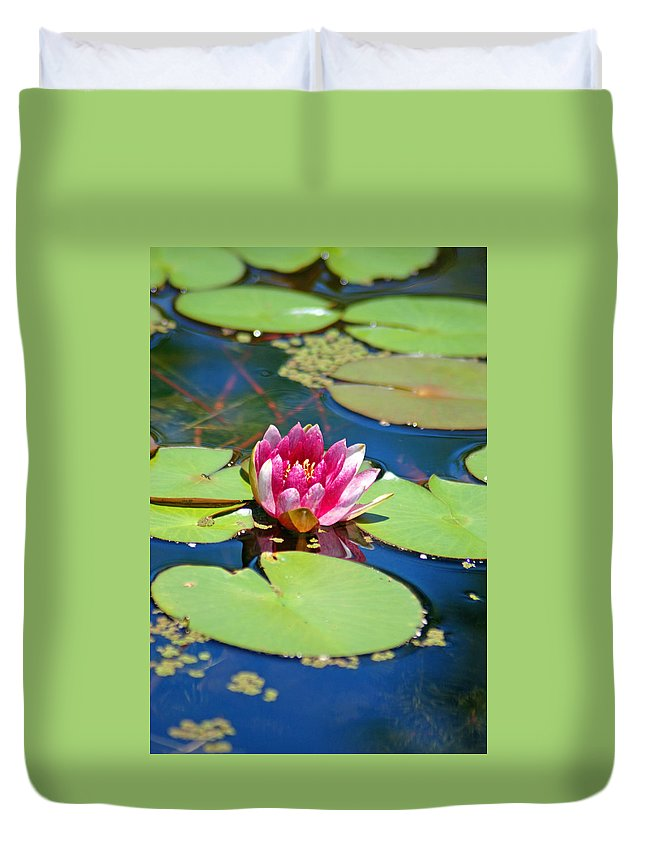 Lily Pond Duvet Cover featuring the photograph Lily Pond by Donna Bentley