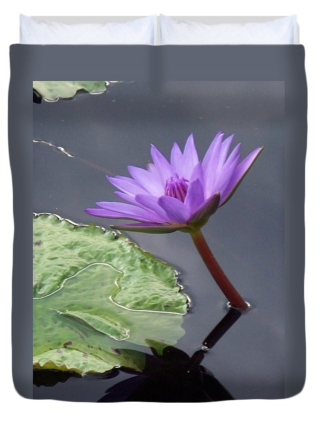 Photograph Duvet Cover featuring the photograph Lily Pond by Eric Schiabor