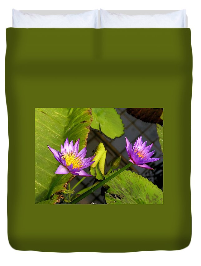 Purple Duvet Cover featuring the photograph Lily Pond by Karen Dickinson