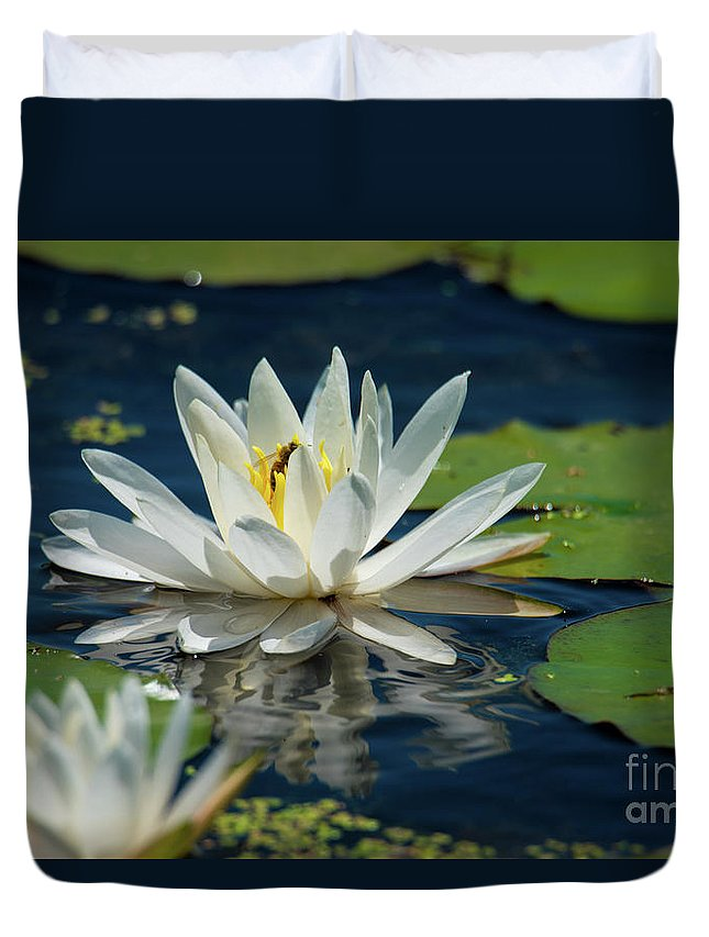 Lily Duvet Cover featuring the photograph Lily With Bee by Paul Mashburn