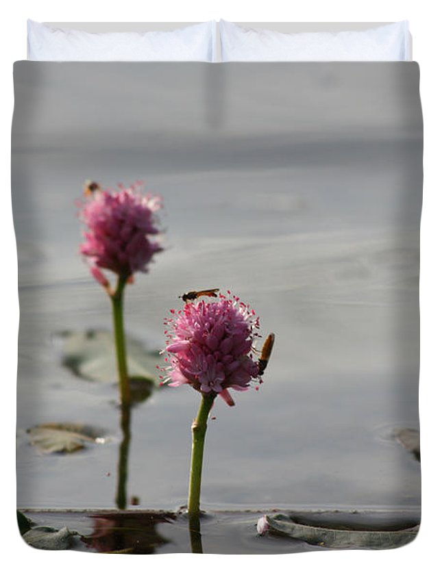 Wasp Lilypads Water Lake Plants Nature Wild Bugs Pink Flower Duvet Cover featuring the photograph Lilypads And Wasps by Andrea Lawrence
