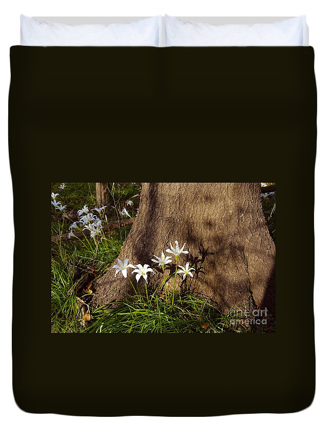 Atamasco Duvet Cover featuring the photograph Lily's Atamasco by David Lee Thompson