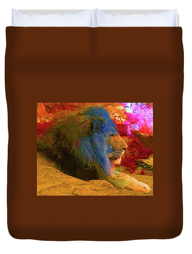 Lincoln Park Zoo Duvet Cover featuring the photograph Lincoln Park Lion by Hari Manev