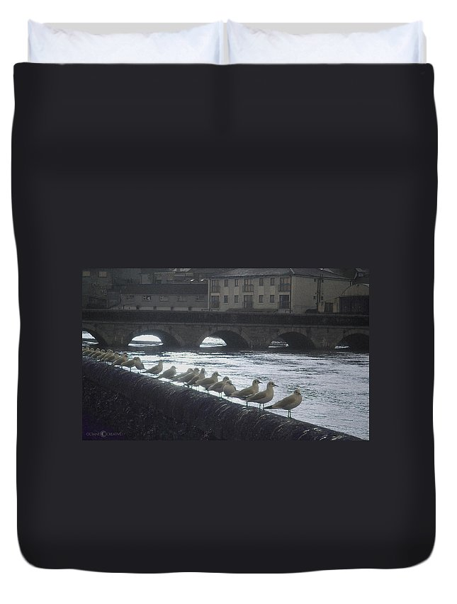 Birds Duvet Cover featuring the photograph Line Of Birds by Tim Nyberg