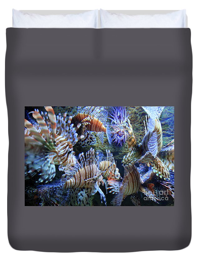 Lion Fish Duvet Cover featuring the photograph Lion Fish by Carol Groenen