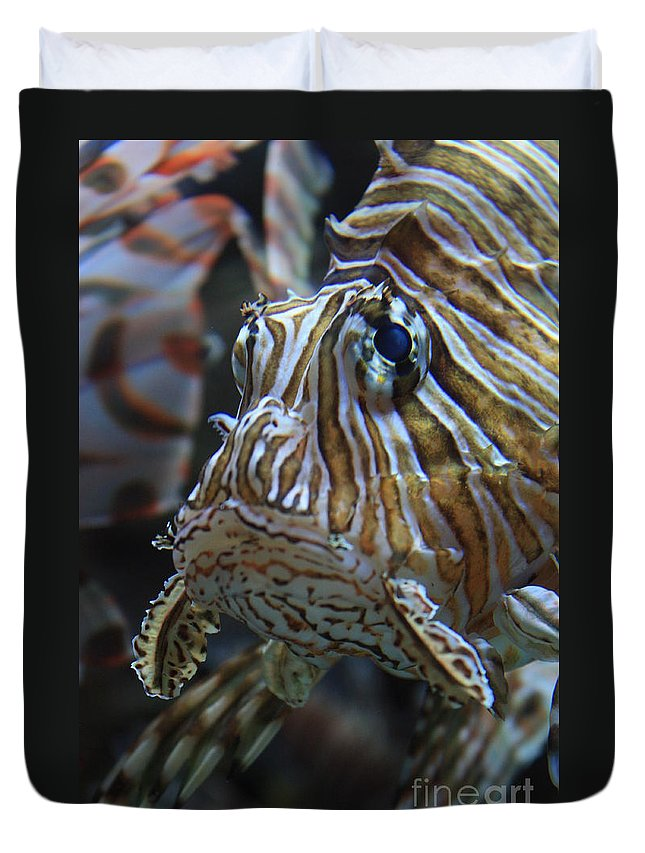 Fish Duvet Cover featuring the photograph Lion Fish Profile by Carol Groenen