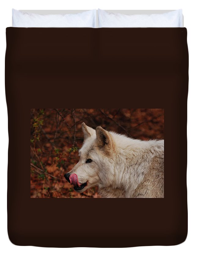 Wolf Duvet Cover featuring the photograph Lip Smacking Good by Lori Tambakis