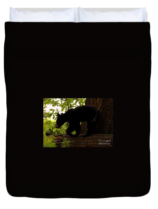 Black Bear Duvet Cover featuring the painting Little Black Bear by David Lee Thompson