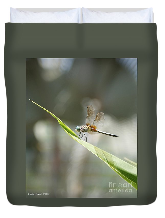 Dragonfly Duvet Cover featuring the photograph Little Dragon by Shelley Jones