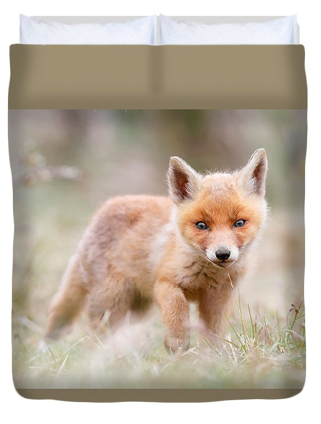 Fox Duvet Cover featuring the photograph Little Fox Kit, Big World by Roeselien Raimond