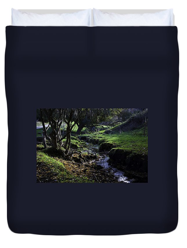 Stream Duvet Cover featuring the photograph Little Stream by Kelly Jade King