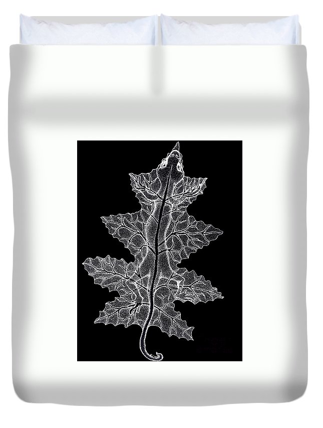 Lizard Art Duvet Cover featuring the drawing Lizard And Leaf by Nick Gustafson