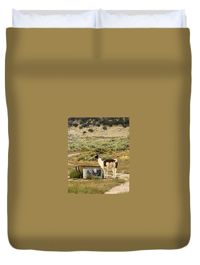 Llama Duvet Cover featuring the photograph Llama Land by Mary Rogers