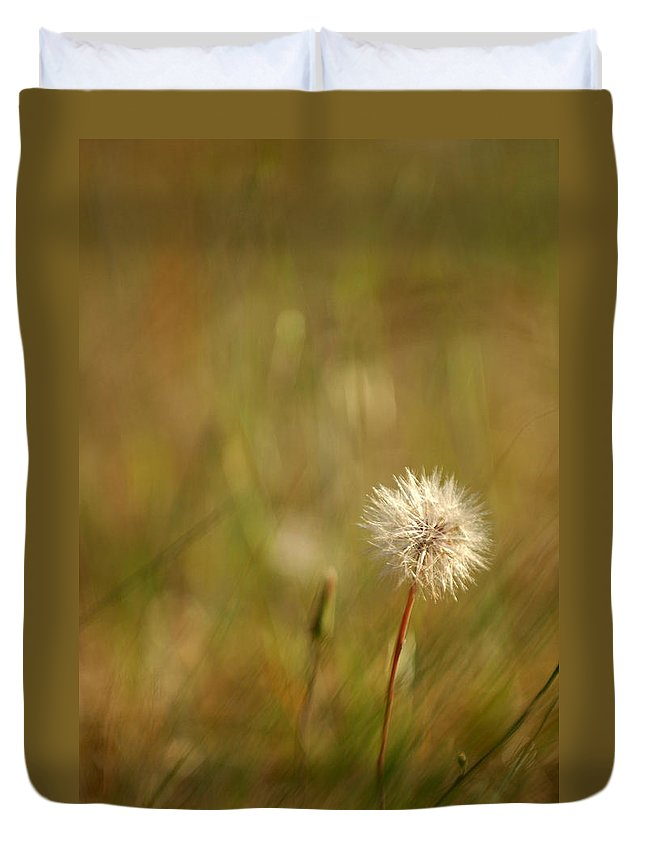 Dandelion Flower Wildflower Nature Botanical Duvet Cover featuring the photograph Lone Dandelion 2 by Jill Reger