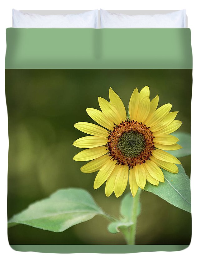 Garden Duvet Cover featuring the photograph Lone Sunflower by MotionOne Studios
