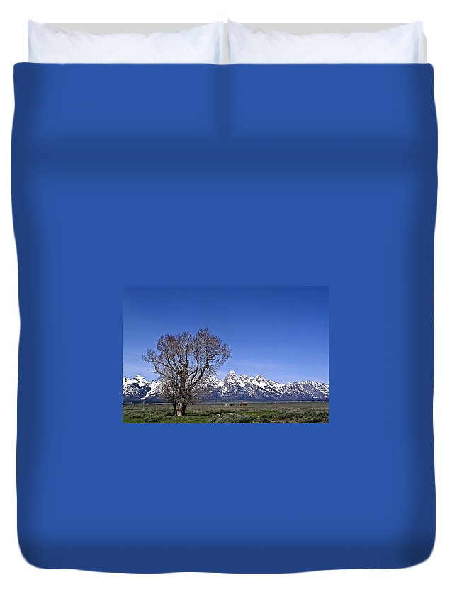 Tree Duvet Cover featuring the photograph Lone Tree At Tetons by Douglas Barnett
