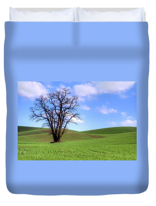 Tree Duvet Cover featuring the photograph Lone Tree - Rolling Hills - Summer Sky by Nikolyn McDonald